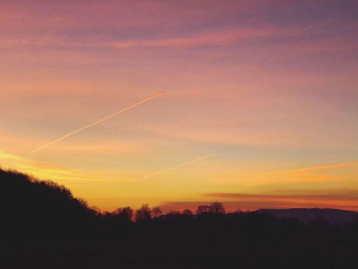 Orange morning