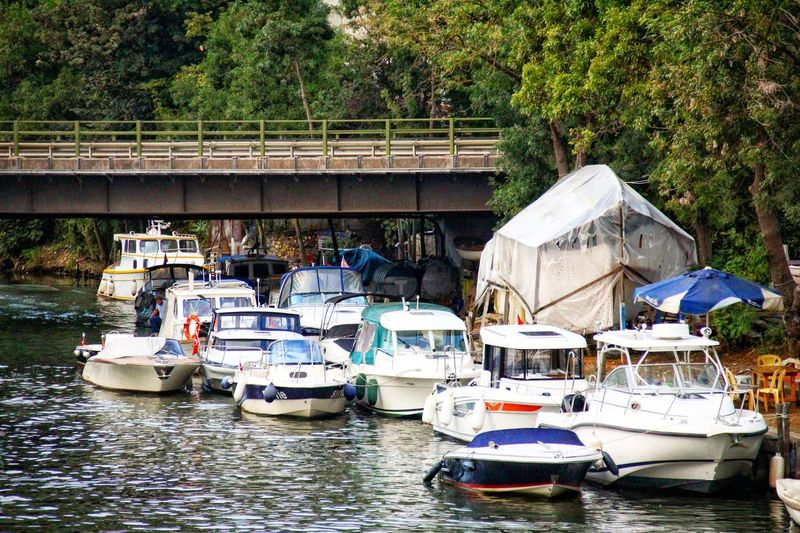 Reklam Kavacik Beykoz Tree Water Nautical Vessel Moored Pedal Boat Waterfront River