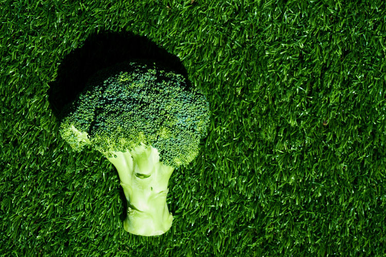 Directly Above Short Of Broccoli On Green Rug