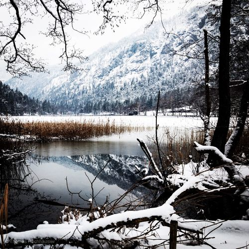 Snow Winter Cold Temperature Nature Bare Tree Beauty In Nature Scenics Lake Tree Frozen Landscape Mountain No People Outdoors Day Water Sky