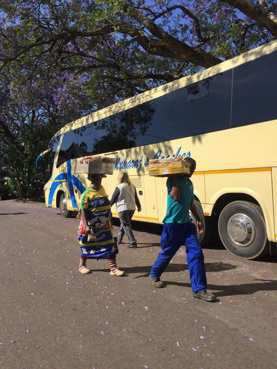 Real People Tree Jacaranda Blue Sky Yellow Bus