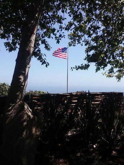미국 국기 USA