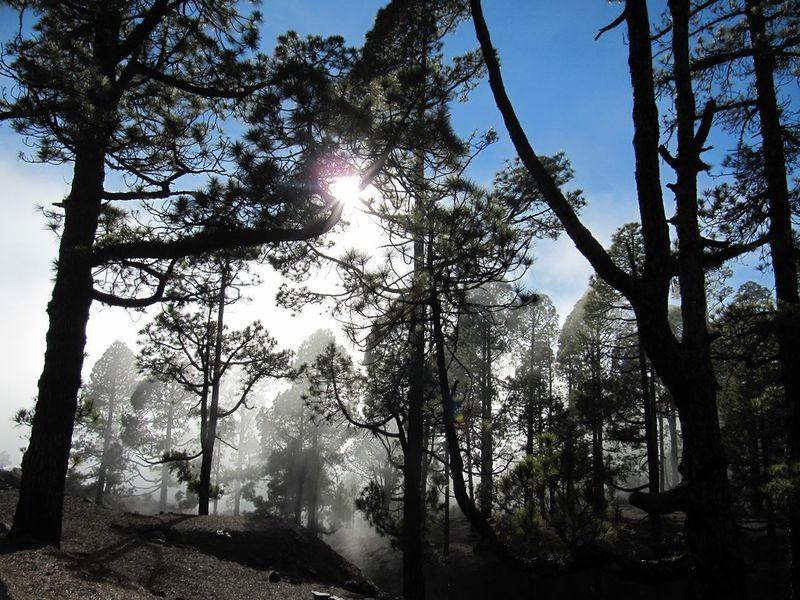 Teneriffa Del Teide Hello World Urlaub 2013 Vulkan Sky