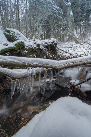 Im Trauntal, Hunsrück Bare Tree Beauty In Nature Branch Cold Temperature Day Forest Frozen Ice Icicle Landscape Nature No People Outdoors Scenics Sky Snow Stream Tranquil Scene Tranquility Tree Tree Trunk Water Waterfall Weather Winter