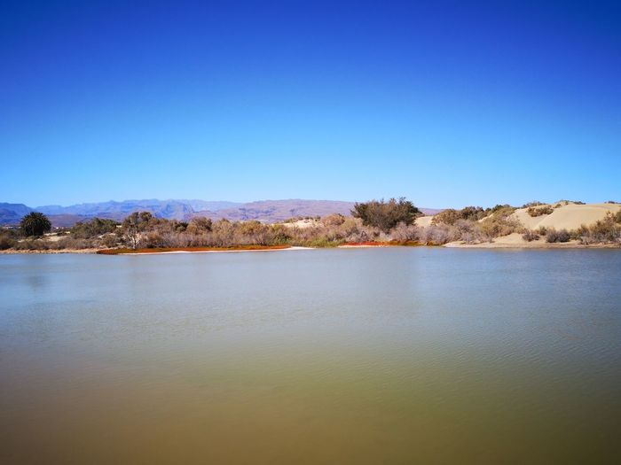 In blue Water