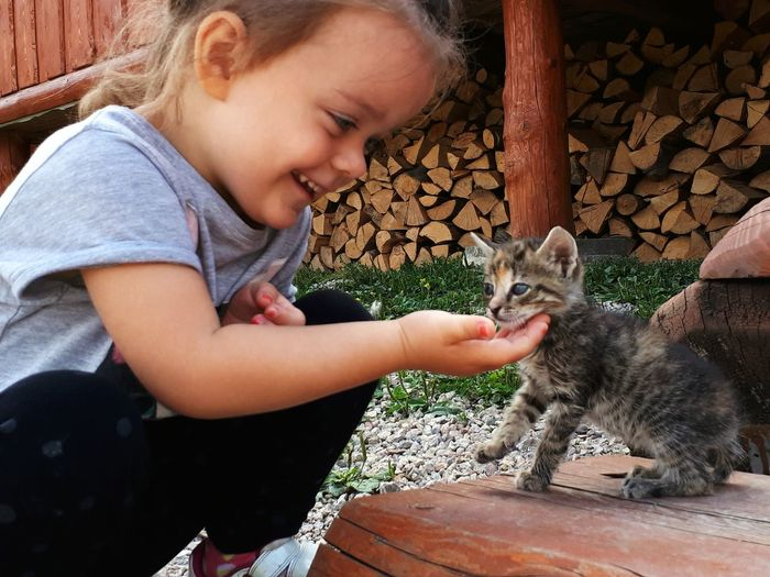 Cute Girl Playing With Kitten