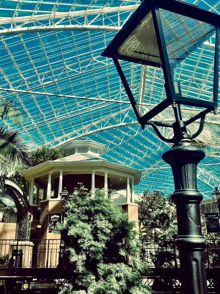 Light Light Architecture Built Structure Building Exterior Low Angle View Modern Blue Travel Destinations Architectural Feature Tourism Gaylord Opryland Resort