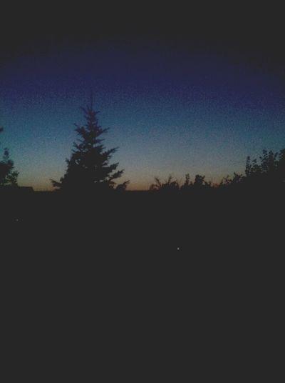 Night Boring ✨⛺️
