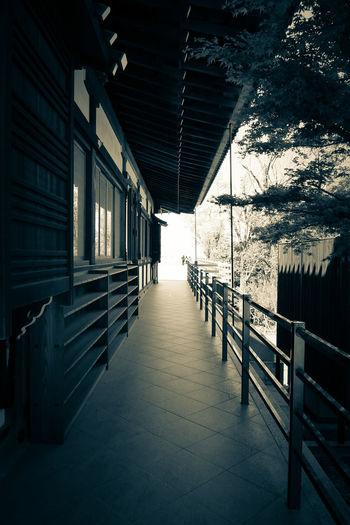 将軍塚青龍殿 Enjoying Life Japanese Temple Ultimate Japan