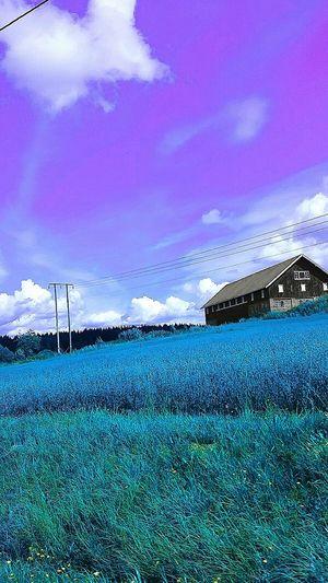 Sky Blue Cloud - Sky Cloud Nature Outdoors Cloudscape No People