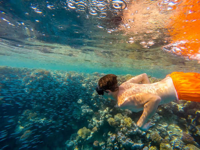 High angle view of shirtless teenage boy snorkeling in sea
