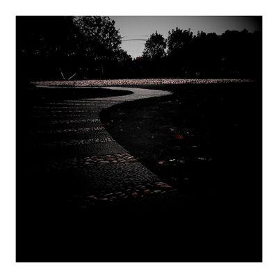 City Street 上海.中国 Autumn Colors Road Red Color Red 秋色 Vignette Shanghai, China City Autumn Leaves Bridge 秋天 Autumn 南园滨江绿地 CityLifeStyle Vignette Art