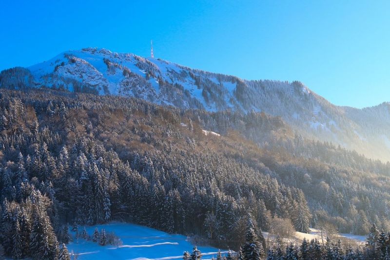 Deutschland Kempten (Allgäu) Snow Wintertime Beat-fighter Winter Landscape Allgäu A winters tale ???