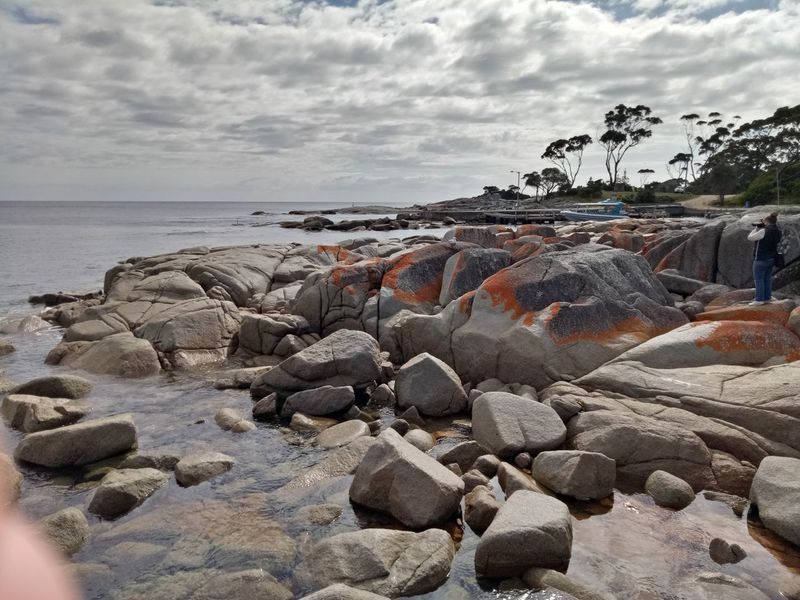 Tasmania Bay Of Fire No People Outdoors Summer Clear Sky Freedom Freshness Day Sand Sea Rocks