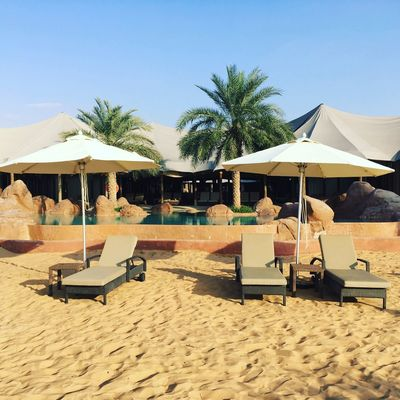Desert resort in Al Ain EyeEm Gallery Al Ain Resort Parasol Sand Land Beach Tropical Climate Tree Sky Plant