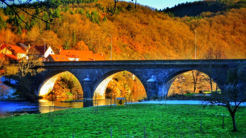 Tree Built Structure Architecture Autumn No People Outdoors Bridge - Man Made Structure Day Grass Nature Sky Water Beautiful Winter Beauty In Nature Nature Tranquility Cold Temperature River View Beautiful Colors Canon Canonphotography Canonpowershot Allier Auvergne