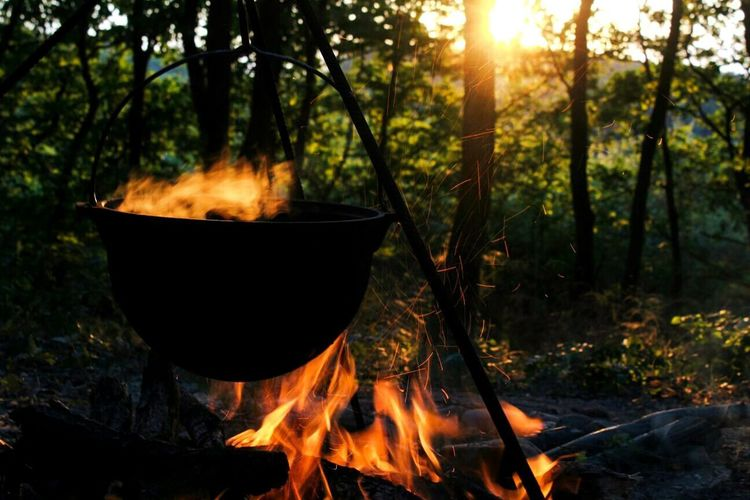 Camping Forest Nature Spending Time With Loved Ones♥ Fun Beautiful Nature Food Bonfire🔥 Sun Kissed Evening 5-7 August Romania