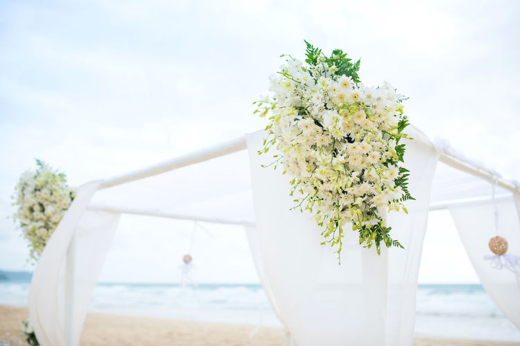Close-up of white flower vase on table against sea