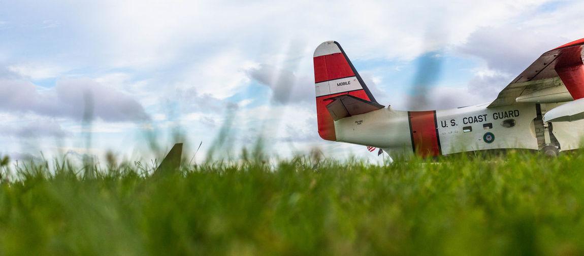 Pop Scenics Military Plane Day Patriotism Grass Peek