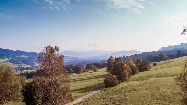 Alpenloge Hotel view Allgäu AlpenLoge Beauty In Nature Day Grass Landscape Mountain Nature No People Outdoors Scenics Sky Tranquil Scene Tranquility Tree