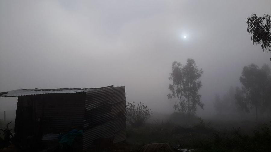 Sleeping Sun Sun In My Face Sun In The Mist Terror Su