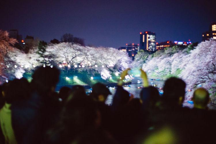 皇居付近 Crowded People Enjoyment Hanami 2017 Illuminated Large Group Of People Night Night Hanami Nightlife Sakura 2017 Tokyo Night Urban Life こういう自然なの好き 皇居