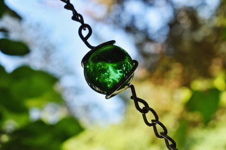Reflection Springtime Sunlight Macro Greenery Leaves Bokeh Contrast Shadows & Lights Glass Marble Round Hanging Tree Close-up Sky Green Color Chain Link