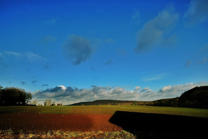 Beauty In Nature Nature Field Landscape Tranquil Scene Sky Scenics Tranquility Rural Scene Agriculture Growth Blue Day No People Cloud - Sky Outdoors Tree