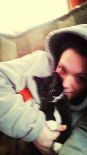 Kittenn
