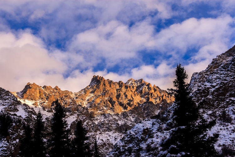 Blue cloudy sky over the Tien Shan heavenly mountains in Ala Archa National Park, Kyrgyzstan Pine Woodland Winter Snow Pinaceae Pine Tree Forest Landscape Beauty In Nature Tree No People Nature Outdoors Cold Temperature Day