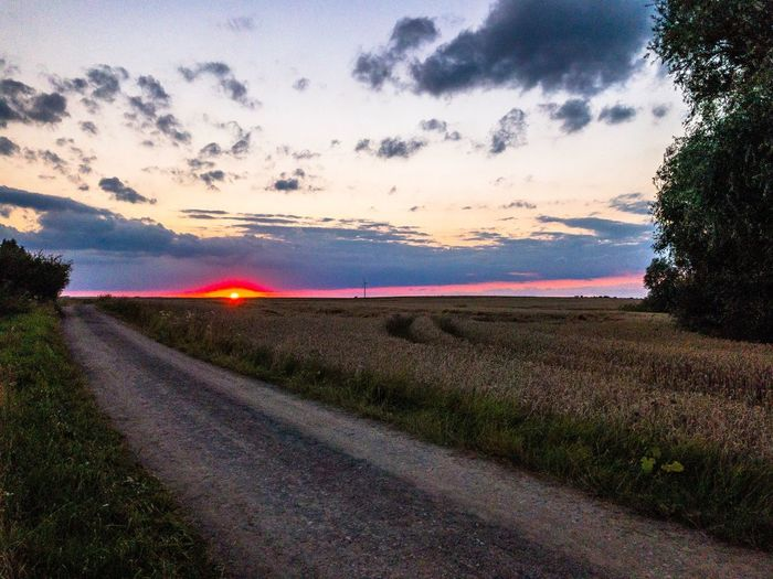 Sunset in Uckermark Road Sunset Sky Grass Wheat No People Nature Tranquil Scene Cloud - Sky Beauty In Nature Outdoors The Way Forward Transportation Scenics Tranquility Landscape Rural Scene Day Tree