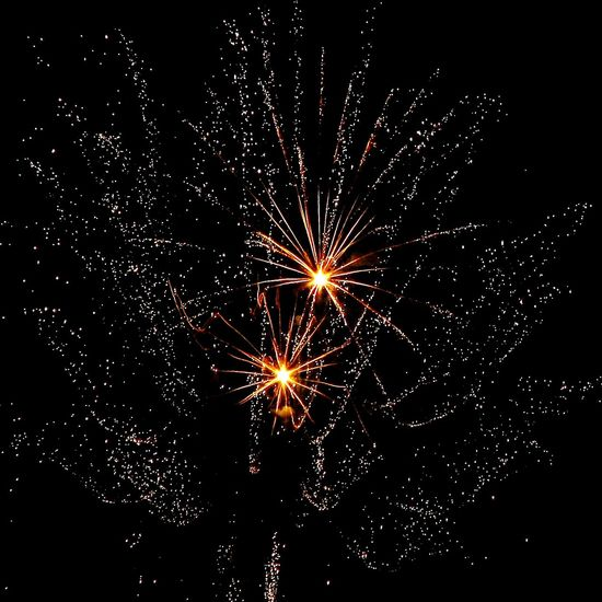 Check This Out EyeEm Gallery Taking Photos Eye4photography  Fireworks Lights In The Dark Explosions In The Sky Lights In The Sky Firework Display Firework Nightphotography Eyeemfireworks Celebration Eyeem Fireworks Fireworksphotography Eyeemsky Things I Like Eyeem Sky Night Lights Eyeem Night Sky_ Collection From My Point Of View Takingphotos Eyeemphotography Eyeemnightlife