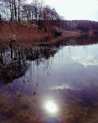 Lake Water Reflection Nature No People Outdoors Spring Photo Of The Day Photooftheday Krampnitz Potsdam Sunlight EyeEm Nature Lover