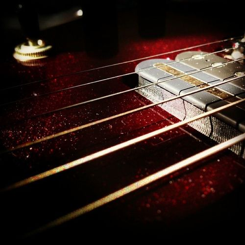 Chance lighting: sun on strings Strings Pickup Guitar Pickups Guitar Strings Sterling Musicman Jp50 Red Music Guitar Musical Instrument Arts Culture And Entertainment Musical Instrument String Indoors  No People Close-up Electric Guitar Recording Studio
