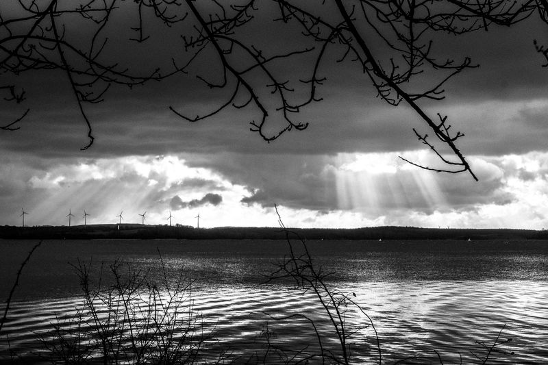 Nature paints a picture... Bare Tree Beauty In Nature Black Cloud - Sky Day Fresh On Eyeem  FUJIFILM X-T2 Lake Nature No People Outdoors Priwall Ray Of Light Reflection Scenics Silhouette Sky Storm Cloud Tranquil Scene Tranquility Tree Water Waves