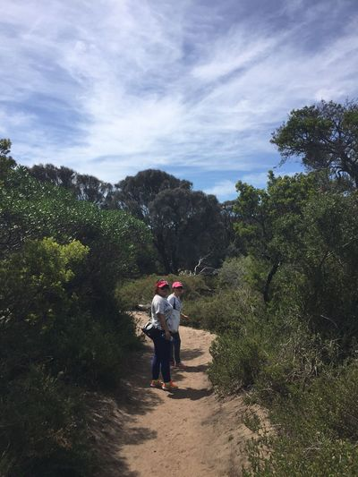 Bush walk at beautiful weekend. Hiking Hikingadventures Capture The Moment Mountains Bushwalking Portrait People Nature_collection EyeEm Nature Lover The Great Outdoors - 2016 EyeEm Awards Beautiful Day Australia Bushes Nature Outdoors The Following