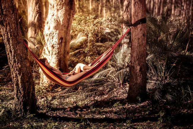 into the wild Australia Travel Landscape One Woman Travel Destinations One Woman Only Tranquility Vacations Holiday Hammock Reading Trees Forest Gum Trees Relaxing Day Outdoors Sunlight Nature Tree Love Yourself