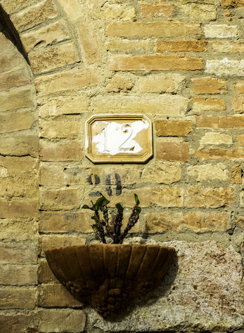 Wall sconce and flower Brick Wall Close-up Day Flower Geometric Shape Italy No People Old Outdoors Sconce Wall - Building Feature