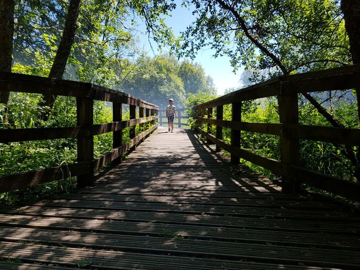 Doing summer.... Boy Summer Kid Childhood Tree Footbridge Bridge - Man Made Structure Wood - Material Shadow Railing Sky Built Structure Architecture Boardwalk Wood Paneling Pathway Woods Walkway
