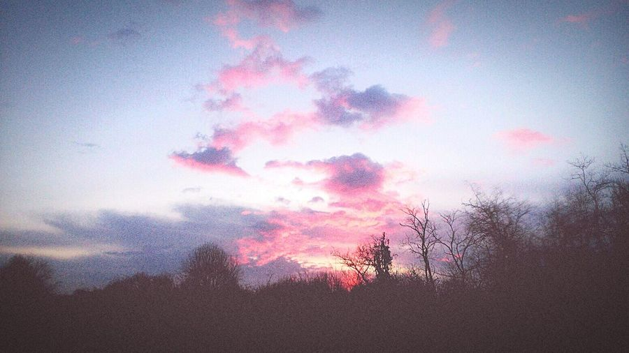 Picoftheday Bright Colors Sunset Pink Sky Nubivagant
