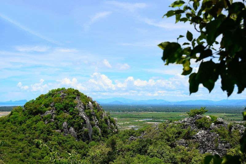 Beautiful viewpoint khao sam roi yot at prachuap province near Hua Hin,beautiful place Tree Flower Blue Leaf Rural Scene Fruit Prickly Pear Cactus Summer Sky Close-up Apple Blossom Coast Horizon Over Water Foreground Blossom Orchard Calm Twig Cherry Tree Cherry Blossom Almond Tree Cultivated Land In Bloom Tea Crop Magnolia Seascape Plantation Apple Tree Stamen Plant Life