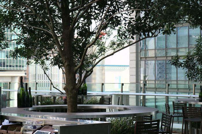 Marunouchi Terrace Jptower KITTE