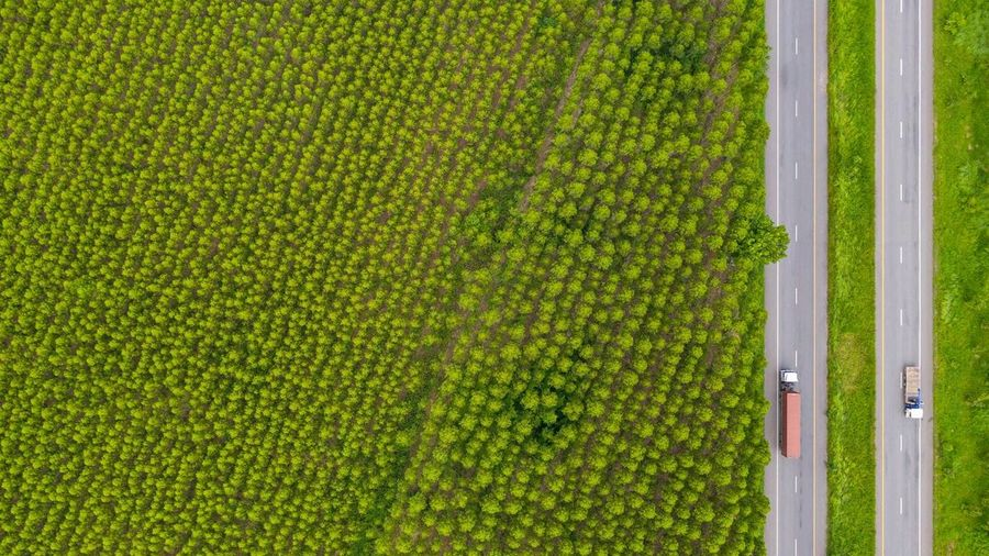 Aerial view from dron truck in road on naturel.