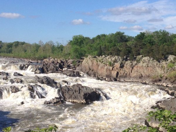 Virginia Nature Rapids On The Potomac