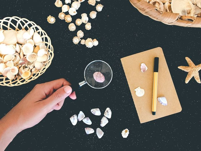 Directly Above Shot Of Cropped Hand Holding Magnifying Glass Over Seashell On Table