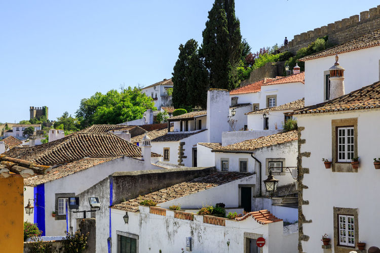 Architecture Building Exterior Built Structure City Clear Sky Day No People Outdoors Sky The Architect - 2017 EyeEm Awards Town Tree Óbidos