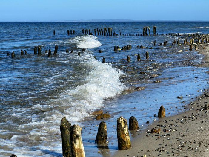 Baltic Sea Ostsee Strand Beach Meer Sea Behrensdorf