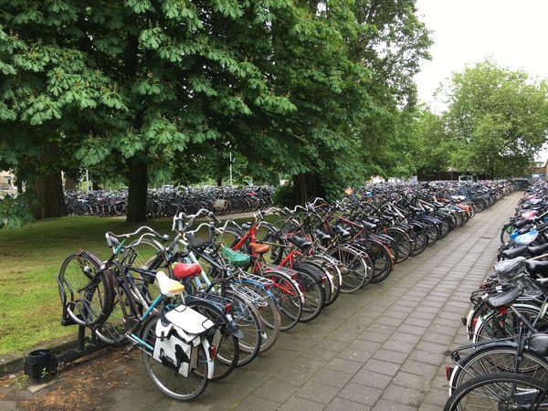 Fietsen Fietsenstalling Bikes Bicycle Rack Bicycle Parking