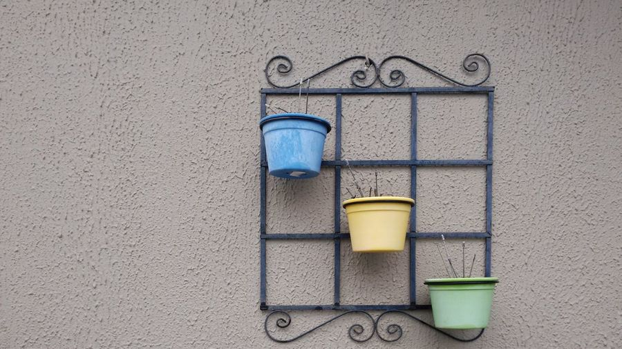 Close-up of potted plants hanging on wall