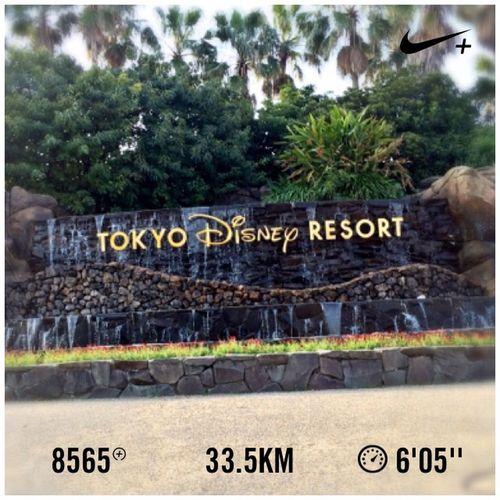 Good Morning My World‼︎ #GYAKUSOU 200min LSD Finish‼︎ #japan #tokyo #nike #run #running #日本 #東京 #ナイキ #ラン #ランニング #disney #disneysea #disneyland #disneyresort #ディズニーシー #ディズニーランド 墨田区〜江東区〜江戸川区〜浦安市。 あーきつかった。